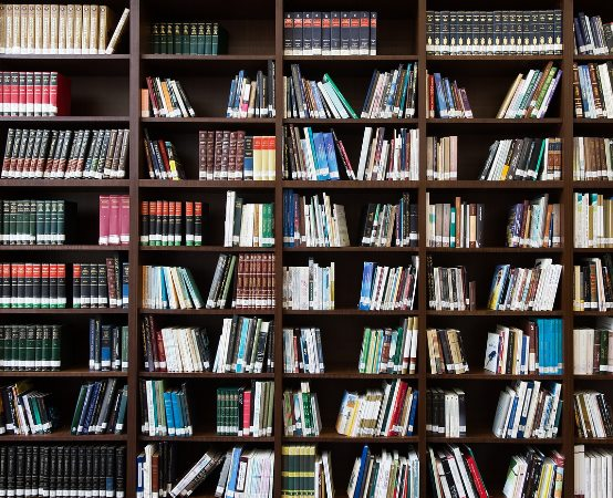 MBP Stalowa Wola:  Lato w Bibliotece